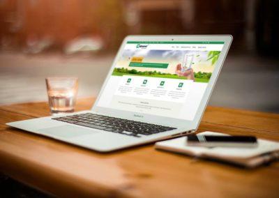 Strona Internetowa Fabryki Okien | Nysa